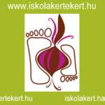 Iskolakert-hálózat
