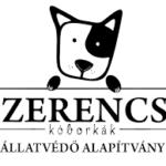Állatok Világnapja a Szerencsi Kóborkák Állatvédő Alapítvánnyal